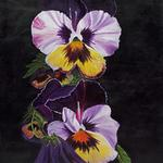 """Alaskan Pansies"" These oversize pansies with their distinctive faces remind me of ""grumpy old men"".  Striking on a black background -  24""W X 30H"" - Original acrylic on canvas        $1100 Giclee on canvas                     $595."